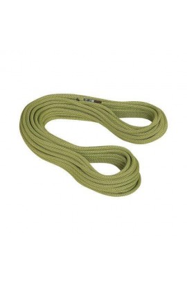 MAMMUT 9.5MM INFINITY CLASSIC - 60M - PAPPEL
